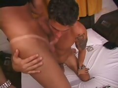 Brunette shemale milena seduces the room service guy
