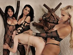 We've got three of the baddest trannies in domination action today. Watch as Alessandra, Michelly and Rafaella take turns punishing their new man