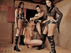 Ts dommes Agatha, Daphynne and Yasmin show no mercy in this scene for their submissive man slave. They tie him up, spank him and each take turns fucki